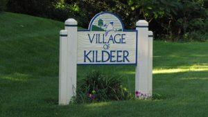Kildeer